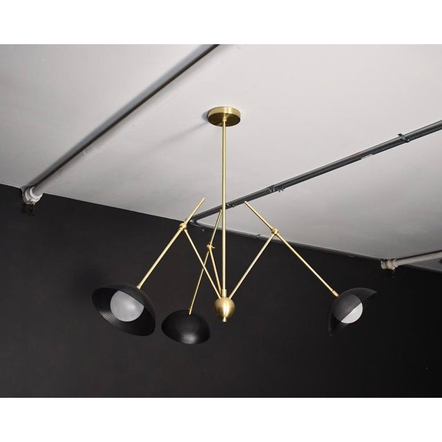 Metal Insetto Articulating Chandelier in Enameled Mesh & Brass by Blueprint Lighting For Sale - Image 7 of 9