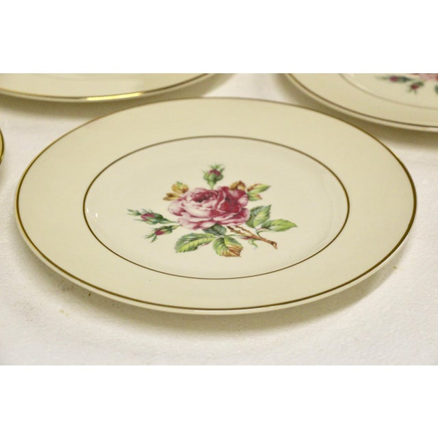 Garden Rose China Plates, S/8 For Sale In Richmond - Image 6 of 8