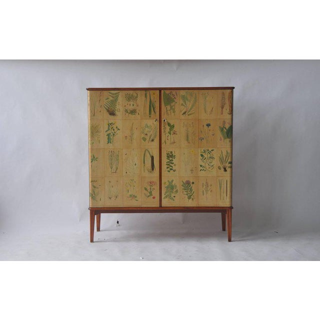 1950s Swedish cabinet papered with botanical prints by C.A.M. Lindman.