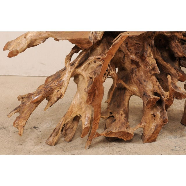 Tropical Hardwood Teak Root Console Table For Sale - Image 11 of 12