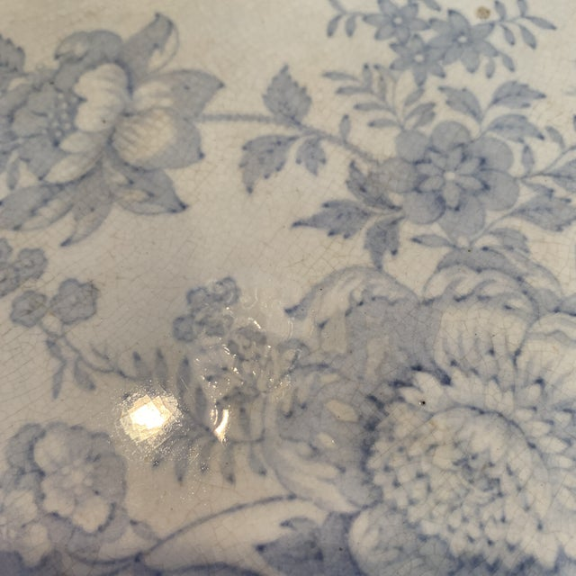 Antique Blue and White C & E Asiatic Pheasants Platter For Sale - Image 6 of 7