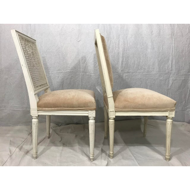 Wood Louis XVI Style Dining Chairs Set of 8 For Sale - Image 7 of 9