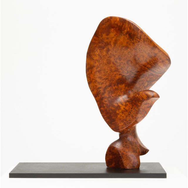 A unique, smoothly carved biomorphic sculpture in highly figured bird's eye mahogany, and mounted on a thick base of black...