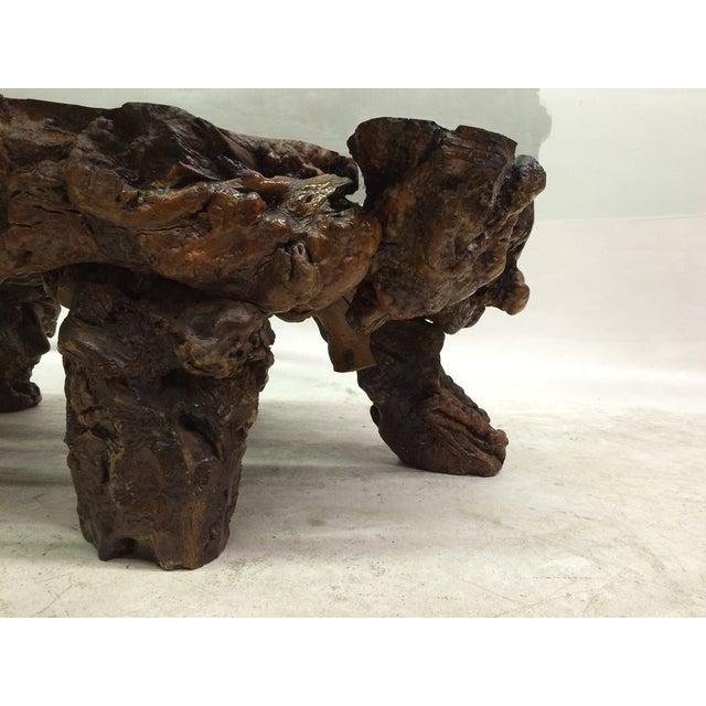 Californian Burl Wood Coffee Table - Image 6 of 6
