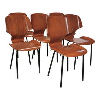 Set of Six Chairs by Carlo Ratti, 1955 For Sale