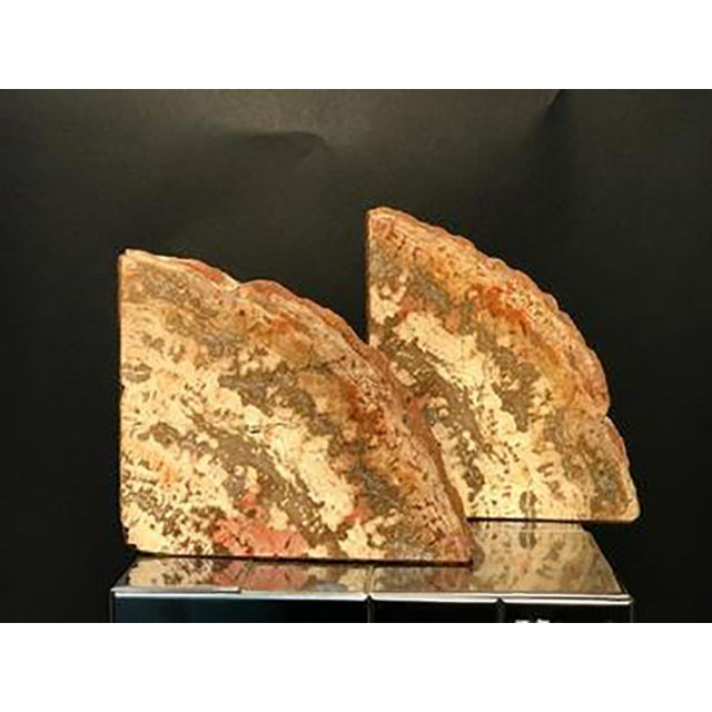 Wood Mid 20th Century Petrified Wood Bookends - a Pair For Sale - Image 7 of 8