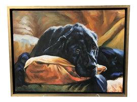 Image of Illustration Paintings