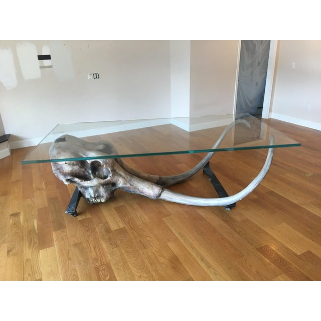 Large Woolly Mammoth Head 8ft Glass Top Table For Sale - Image 4 of 13