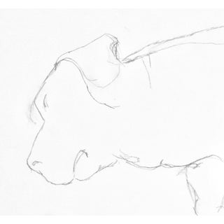 """""""Sleeping Beagle"""" Contemporary Drawing by Martha Holden For Sale"""