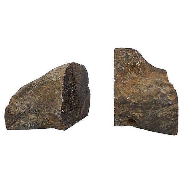 Mid-Century Modern Vintage Petrified Wood Bookends For Sale - Image 3 of 6