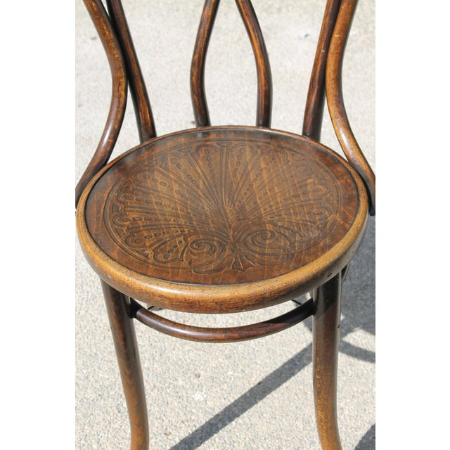 Mundus and J J Kohn Ltd Bentwood Chairs - Set of 6 For Sale In Palm Springs - Image 6 of 12