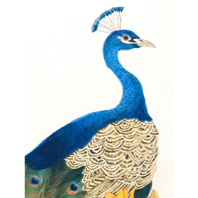 A vibrant and lush paradise of Mandavilla, Tumeric and Nag Champa is the perfect spot for this regal peacock to pose. This...