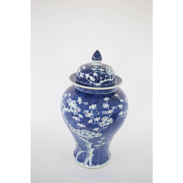 Blue & White Cherry Blossom Temple Jars - A Pair For Sale - Image 4 of 5