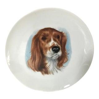 Vintage Mid-Century West German Porcelain Dog Plate For Sale