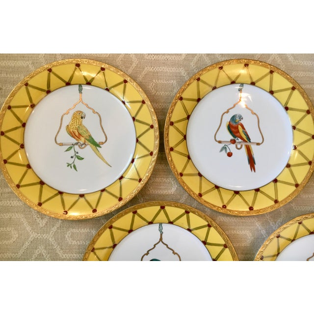 Traditional Chelsea House Decorative Tropical Bird Parrot Plates - Set of 8 For Sale - Image 3 of 10