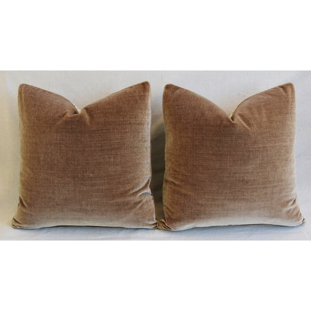 """Scalamandre Aviary & Velvet Feather/Down Pillows 21"""" Square - Pair For Sale - Image 10 of 13"""