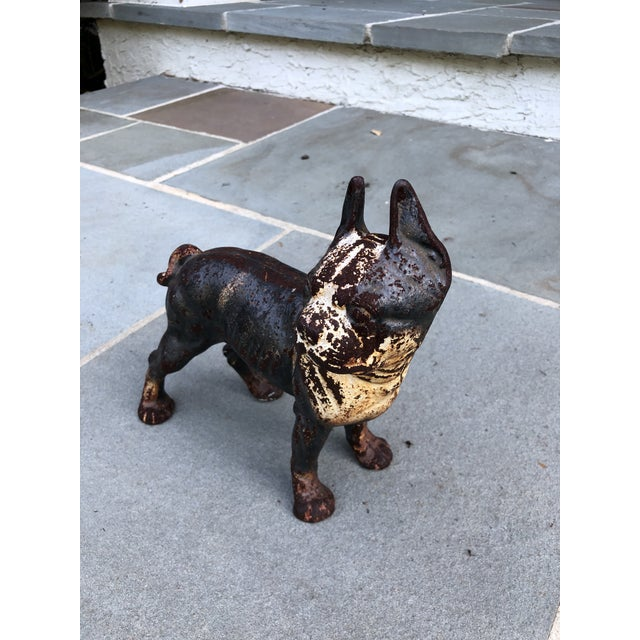Wonderful classic cast iron dog - French bulldog or Boston Terrier, probably Hubley. Great accent piece!