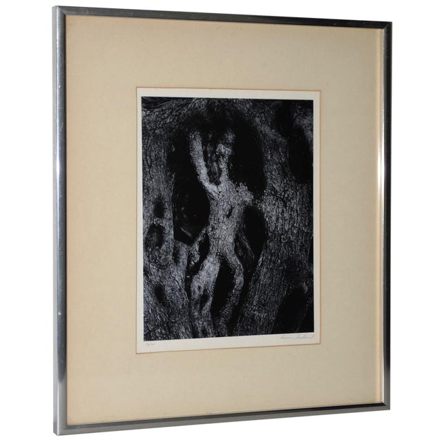 Aaron Siskind (American, 1903-1991) Black & White Photograph C.1970 For Sale