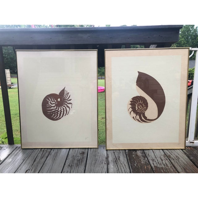 Mid-Century Modern Vintage Van Guard Studio Nautilus Shell Lithographs - a Pair For Sale - Image 3 of 9