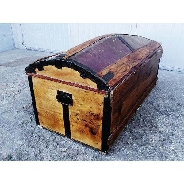 Animal Skin Solid French Storage Trunk With Leather Inserts For Sale - Image 7 of 9