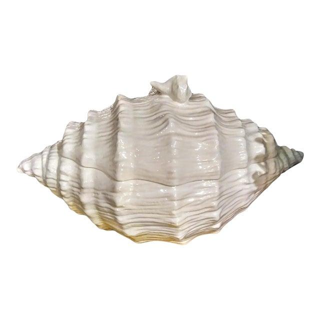 Large Ceramic White Coastal Seashell Fitz and Floyd Style Soup Tureen Server Bowl For Sale