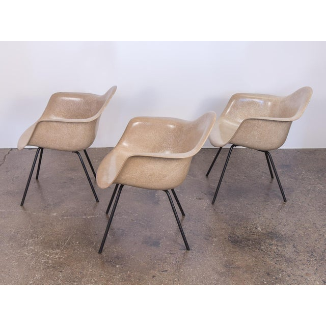 1950s Second Generation Greige Eames Armshell Chair For Sale - Image 5 of 11