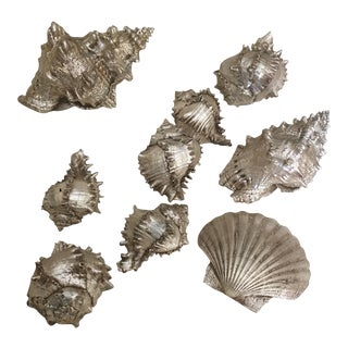 Silver Leafed Sea Shells - Set of 9
