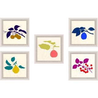 Bright Pomona Fruit, Framed Artwork - Set Of 5 For Sale