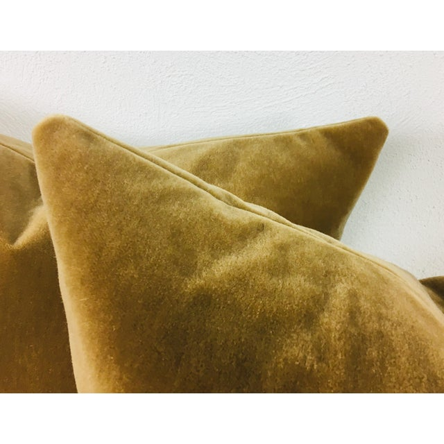 This is a pair of champagne yellow wool mohair pillows. Pillows are made in house and include a goose feather and down...