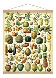 Image of Burnt Orange Reproduction Prints