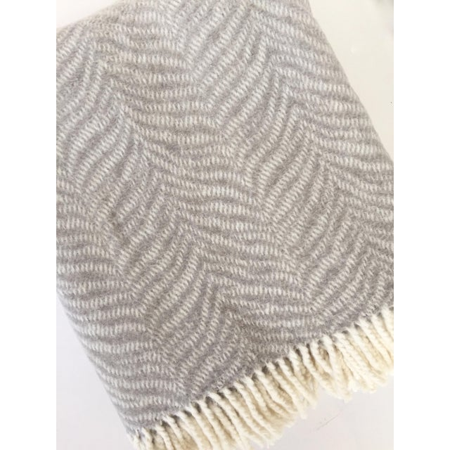 NEW, plush, fringed tiger throw blanket in gray. 50% Cotton, 50% microfiber. Machine washable.