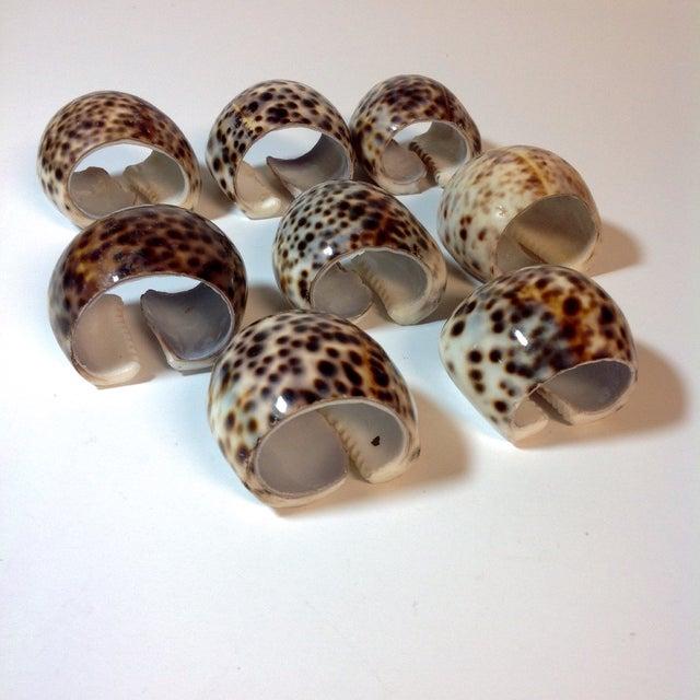 Natural Cheetah Shell Napkin Rings - Set of 8 - Image 6 of 6