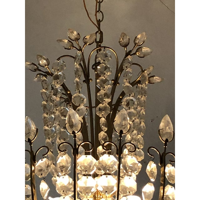 A wonderfully shaped glamorous Italian chandelier having special details such as leaf shaped crystals adorning the top, a...