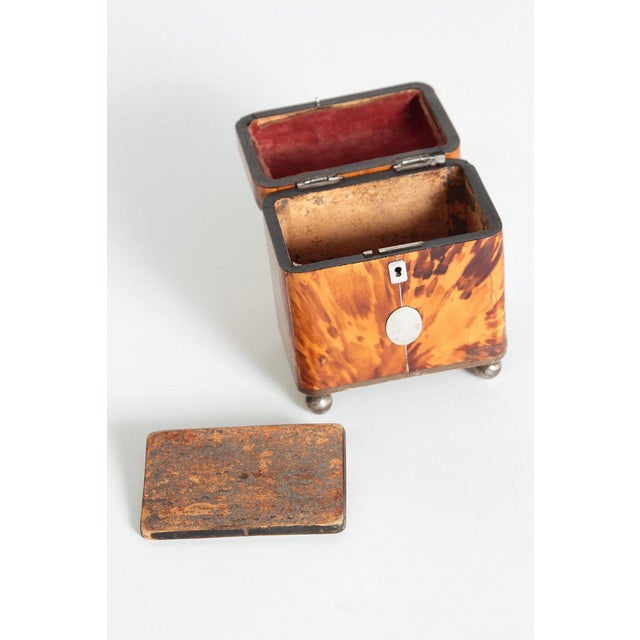 Early 19th Century English Regency Tortoiseshell Tea Caddy For Sale In Dallas - Image 6 of 11