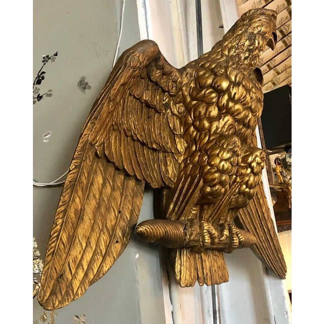 Wood 19th Century Giltwood Federal Carved Wall Sculpture of an American Eagle For Sale - Image 7 of 10