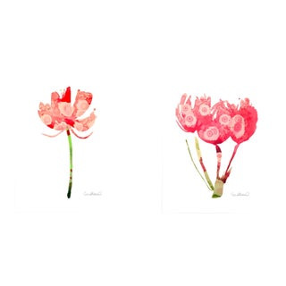Botanical Grouping Giclee Prints - A Pair For Sale