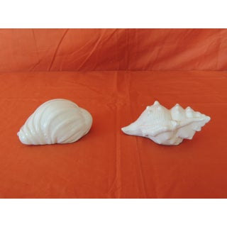 Pair of Vintage White Seashells Salt and Pepper Shakers Preview