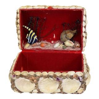 Vintage French Souvenir Seashell Box For Sale