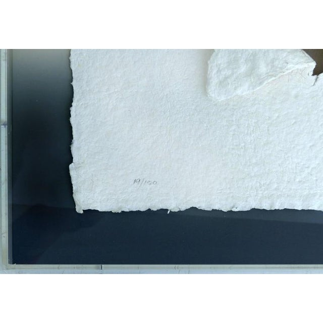 Tan 20th Century Handmade Paper Wall Sculpture Incased in Acrylic For Sale - Image 8 of 11