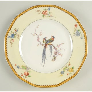 Vintage Mixed Bird Dinner Plates - Set of 8 Preview