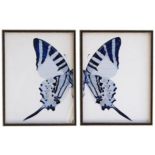 "Split Blue Butterfly With Tail - 46"" X 29"" For Sale"