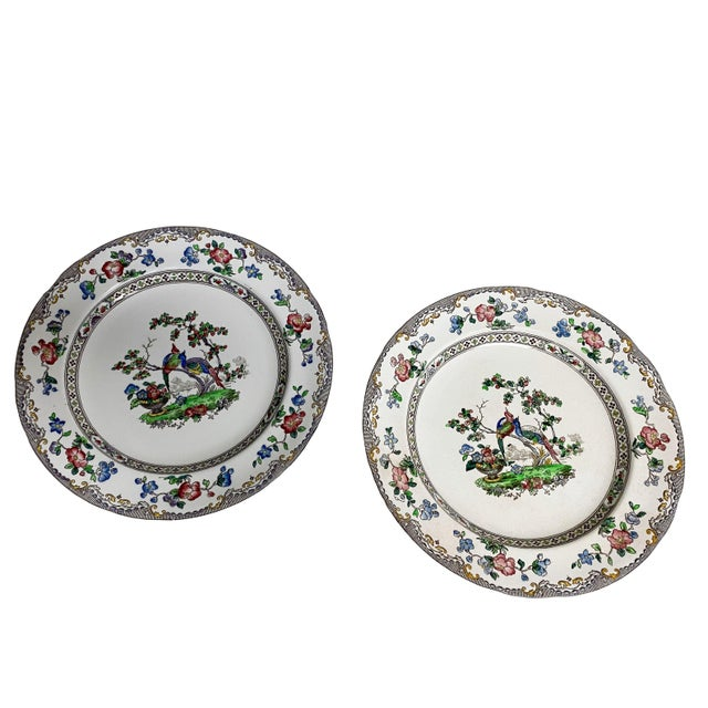 Black Copeland Spode Bird and Border Plates - a Pair For Sale - Image 8 of 8