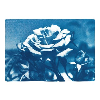 Cyanotype on Watercolor Paper Blue and White Brutalist Flower by Kind of Cyan For Sale
