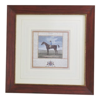 Framed & Matted Horse Print 'Creeping Molly'