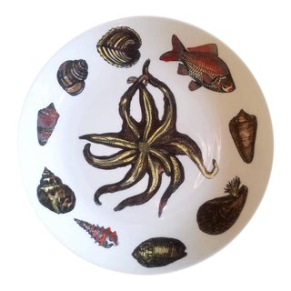 Piero Fornasetti Rare Dishes Decorated With Sea Anemones, Urchins & Shells - Set of 8 For Sale