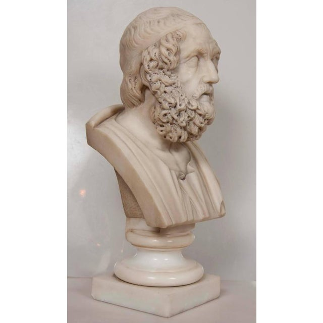 White Marble Bust of Homer For Sale - Image 8 of 11