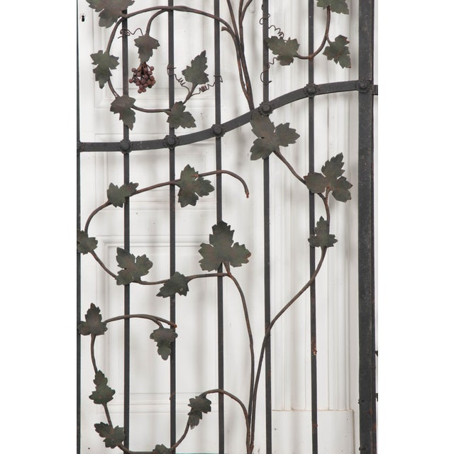 "Pair of French Early 20th Century Painted Wrought-Iron ""Grapevine"" Gates For Sale In Baton Rouge - Image 6 of 13"