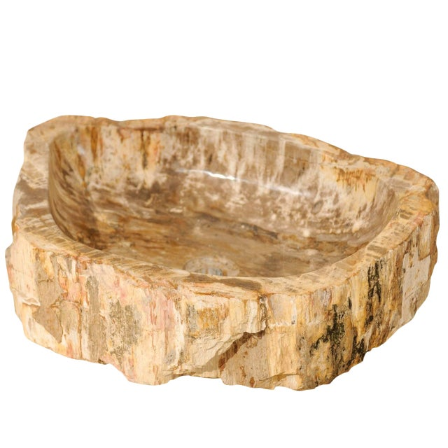 Vintage Mid Century Petrified Wood Sink For Sale