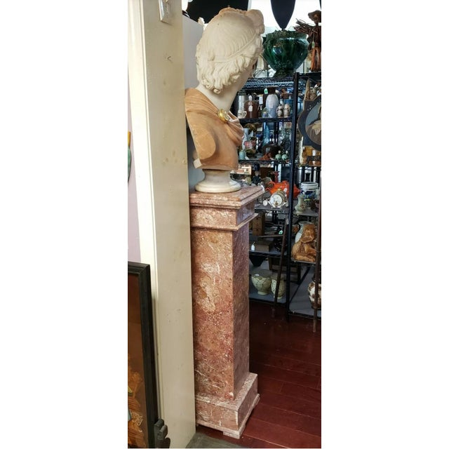 Early 20th Century Italian Art Nouveau Carrara and Salmon Marble Apollo of Belvedere Bust on Rose Marble Pedestal For Sale - Image 5 of 7