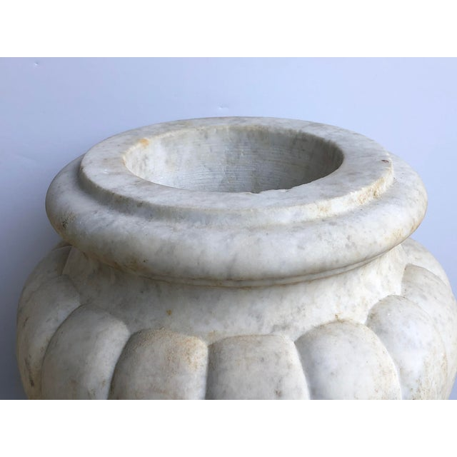 each handsome hand-carved marble urn with rolled lip above an ovoid lobed body resting on a flared base